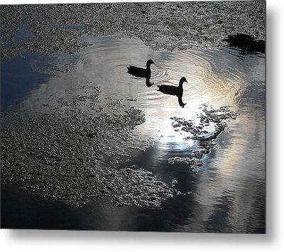Graceful Living Metal Print