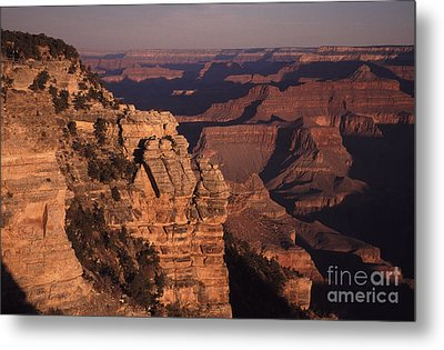 Metal Print featuring the photograph Grand Canyon Sunrise by Liz Leyden