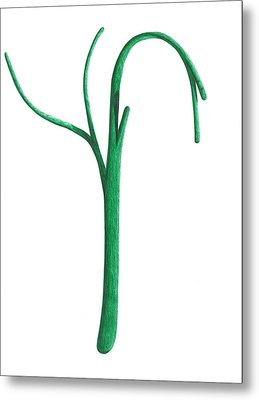 Metal Print featuring the drawing Green Branche by Giuseppe Epifani