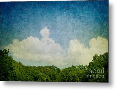Grunge Background With Landscape Metal Print by Mythja  Photography