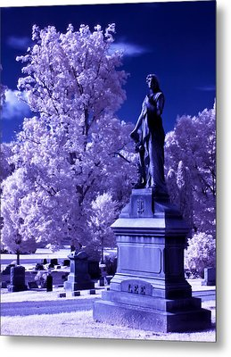 Metal Print featuring the photograph Guardian by David Stine