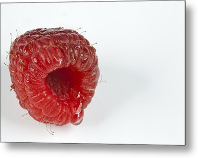 Hairy Raspberry Metal Print by John Crothers