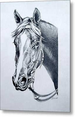 Handsome Metal Print by Patricia Howitt