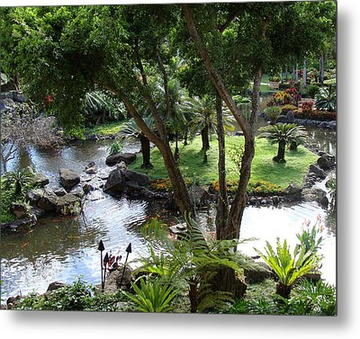 Hawaiian Pond  Metal Print