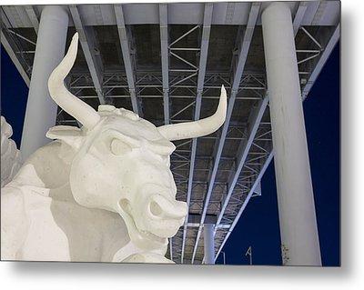 Head Of The Bull Metal Print by Tim Grams