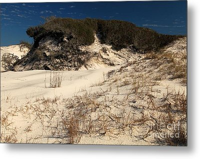 Healthy Dunes Metal Print by Adam Jewell