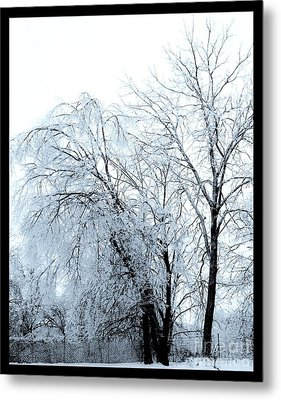 Heavy Ice Tree Redo Metal Print by Marsha Heiken