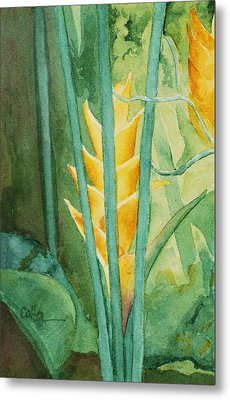 Heliconia Metal Print by Diane Cutter