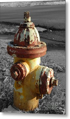 Metal Print featuring the photograph Here When You Need Me by Lena Wilhite