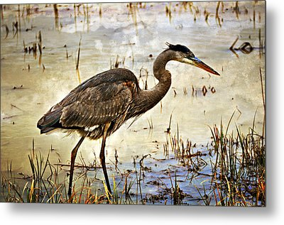 Heron On A Cloudy Day Metal Print by Marty Koch