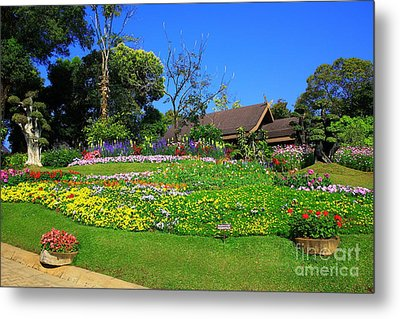 Home Gardening Zones Metal Print by Boon Mee