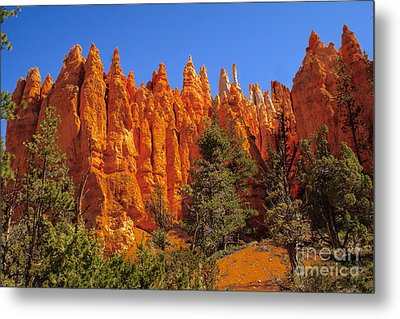 Hoodoos Along The Trail Metal Print by Robert Bales