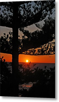 Metal Print featuring the photograph Hope by Ankya Klay