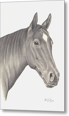Metal Print featuring the drawing Horses Beauty by Patricia Hiltz