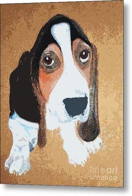 Hound Dog Metal Print by Rachel Barrett