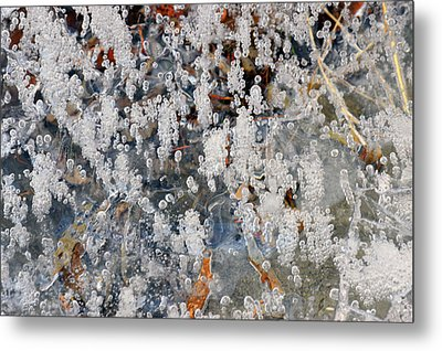 Ice Bubbles  Metal Print