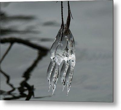 Ice Dance Metal Print by Lara Ellis