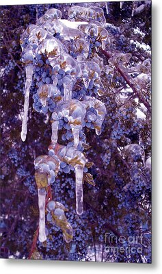 Ice In Purple Metal Print by R McLellan