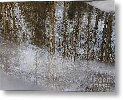 Ice Reflection Metal Print