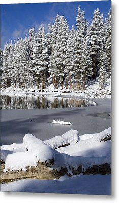 Icy Cold Metal Print by Chris Brannen