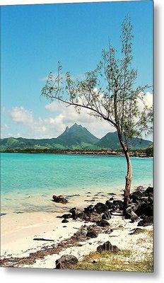 Ile Aux Cerfs Mauritius Metal Print by David Gardener