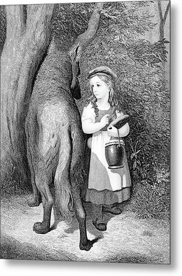 Illustration Of Little Red Riding Hood Metal Print