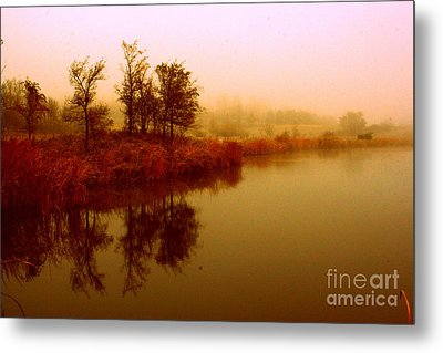 Metal Print featuring the photograph Impressionist Reflection by Julie Lueders
