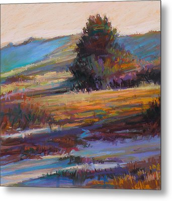 In The Dunes Metal Print by Ed Chesnovitch