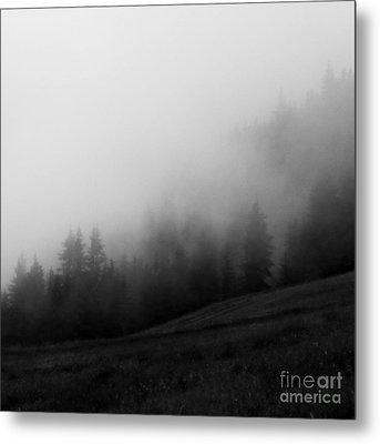 In The Fog Metal Print