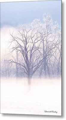 In The Mist Metal Print by Laurinda Bowling