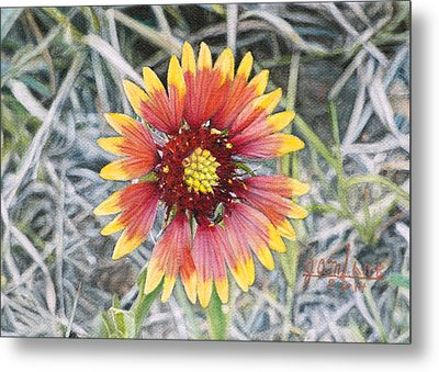 Metal Print featuring the painting Indian Blanket by Joshua Martin