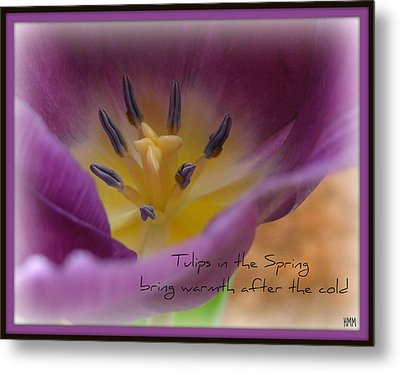 Metal Print featuring the photograph Inside A Tulip by Heidi Manly