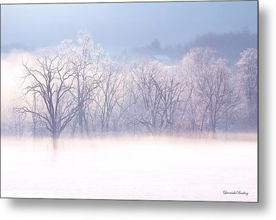 Into The Mist Metal Print by Laurinda Bowling