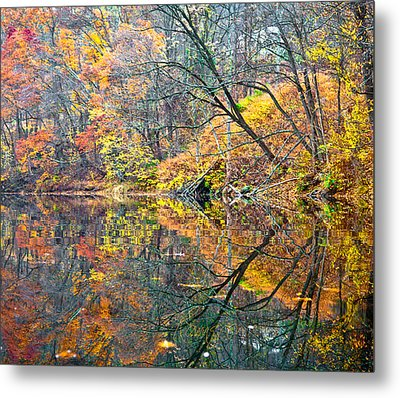 Invasion Metal Print by Tom Cameron