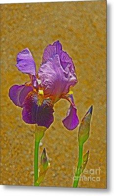 Iris Flower Metal Print by Nur Roy