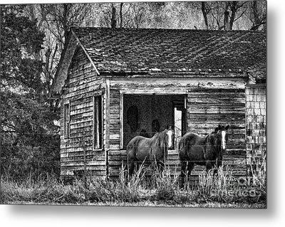 Is This Our Barn Metal Print by Betty LaRue