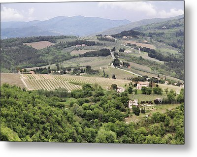 Italian Vineyards Metal Print by Nancy Ingersoll