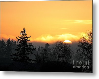 January Goodnight 2 Metal Print by Erica Hanel