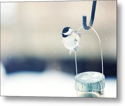 Just Hold On Metal Print by Kay Pickens