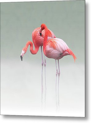 Just We Two ... Metal Print