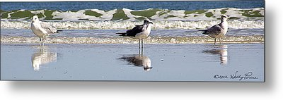 Metal Print featuring the photograph Keeping Watch by Kathy Ponce