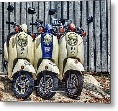 Conch Travel Metal Print by Swank Photography