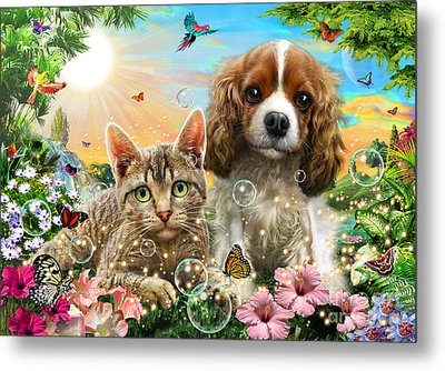 Kitten And Puppy Metal Print by Adrian Chesterman