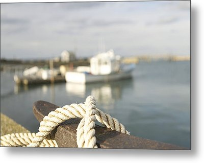 Knot Going Far Metal Print by Eugene Bergeron