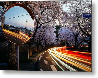 Korea's Roadside Blossoms Metal Print