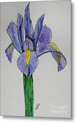 Kristinas Iris Metal Print by Marcia Weller-Wenbert