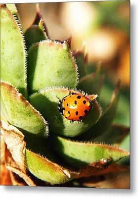 Ladybug And Chick Metal Print