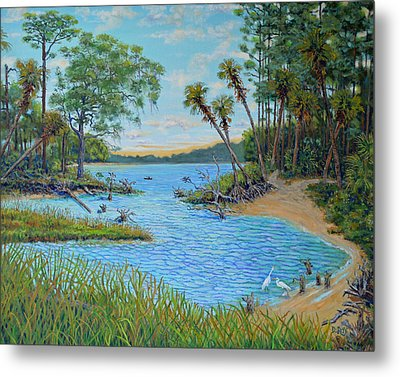 Lagoon At Hunting Island 2 Metal Print by Dwain Ray