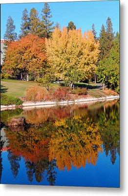 Lake At Davis Metal Print by Jim Halas