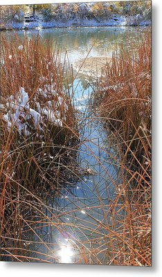 Metal Print featuring the photograph Lake Glitter by Diane Alexander
